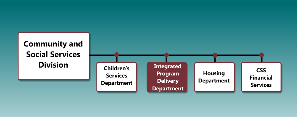 Integrated Program Delivery Org Chart