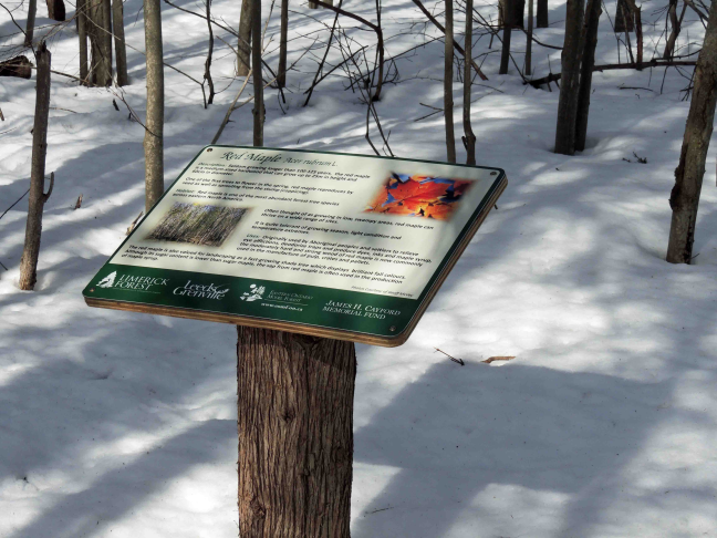 Interpretive signage along trail