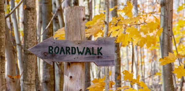Image of a trail sign