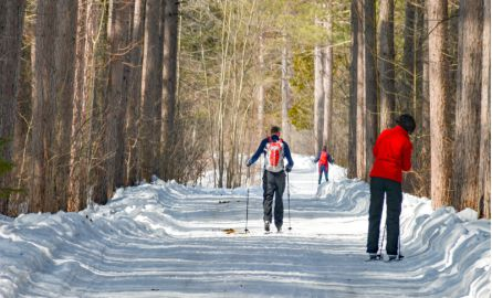 Hikers on a trail in the winter
