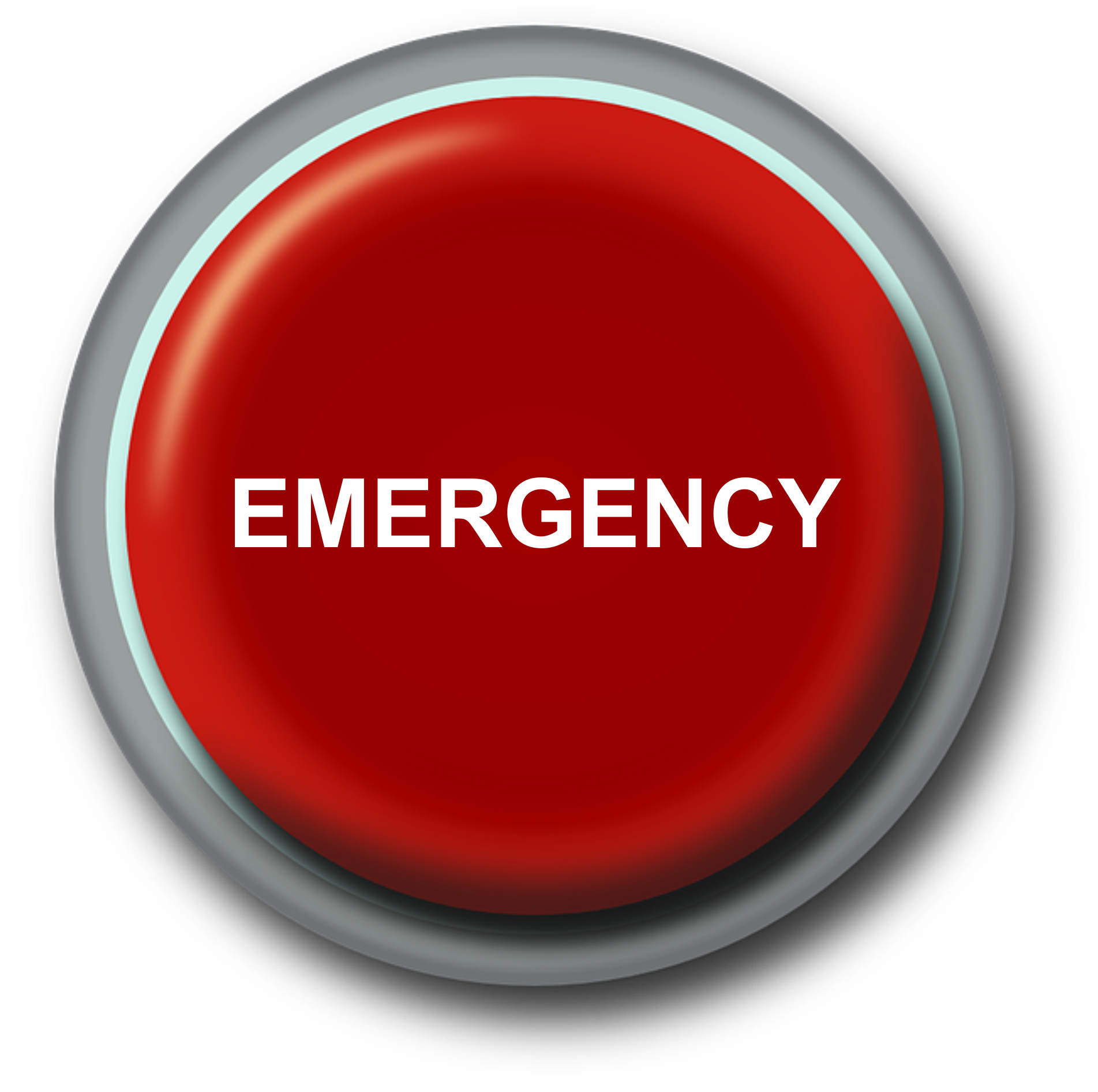 image of a panic button with emergency written on it